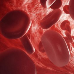 What are Blood Cancer and Natural Cure for Blood Cancer