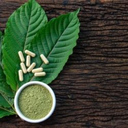 Things You Need To Know About How To Take Kratom